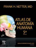 Atlas de Anatomia Humana - Netter - 5ed (1)