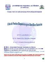 Atlas de Pruebas Bioquimicas Para Identificar Bacterias