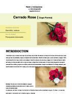 Cerrado Rose ( Cerrado Rose (: Introdoction
