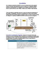Cotizacion - Cercos-Electricos-130