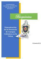 Demostracion de Cuerpos Cetonicos en La Orina