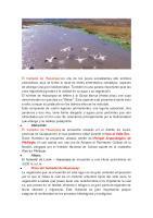 El humedal de Huacarpay