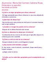 Entrevista a Un Apicultor