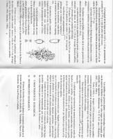 Img097 PDF