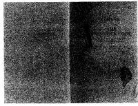 Karl Fulves - The Shamrock Code & the Parallel Principle