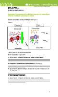 La célula_ estudi (1).docx