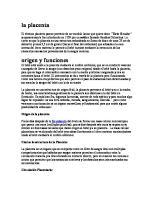 La Placenta, Estructura y Funcion