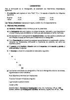 Lineamientos de Investigacion Monografica