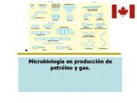 Oilfield Microbiology