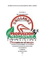 Protocolos de Bioseguridad en Ovinos y Caprinos