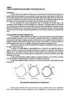 Tema 2. Conceptos Basicos de Anatomia y Fisiologia Ocular